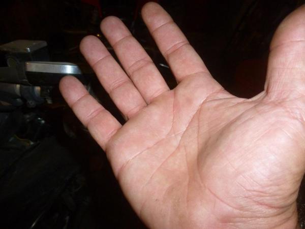 P1080236.thumb.JPG.5f8c79bcb900937f6c7abea184f740a5.JPG